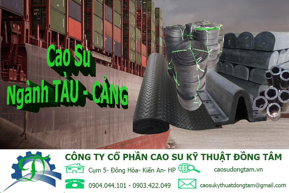 CAO SU NGÀNH TÀU - CẢNG